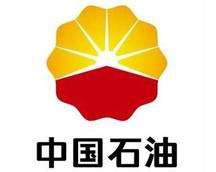 中国石油上海分公司大型多媒体会议厅