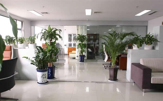 最佳上海办公家具环境你值得拥有!