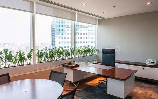 一棵小草就能让你的办公室发生意想不到的变化