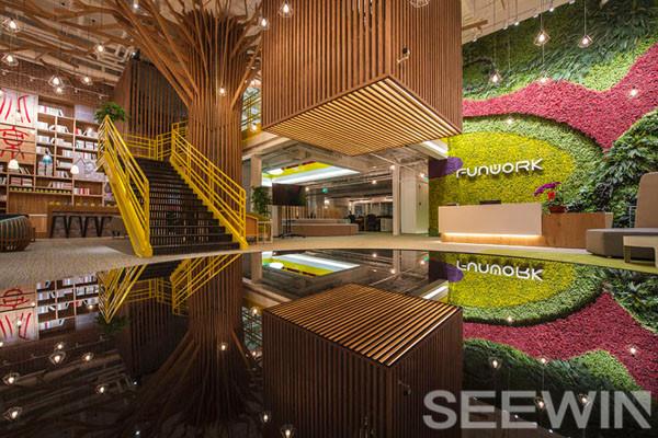办公空间中绿色植物的价值何在?