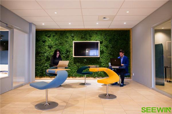 整个办公环境洋溢着纯粹而简约的气息