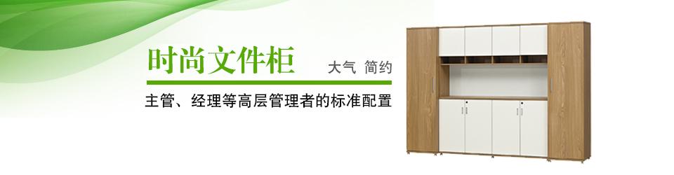 实木文件柜-油漆文件柜-办公室书柜-资料柜-SEEWIN诗敏办公家具