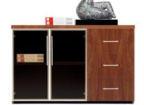 实木文件柜-WJG12