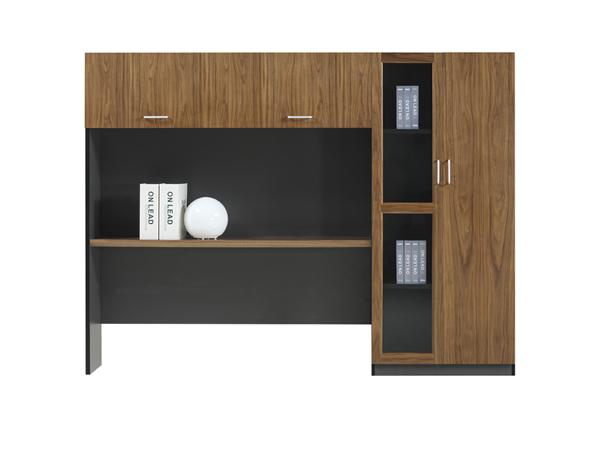实木文件柜-WJG07